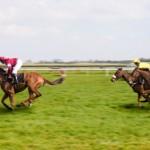 Horse Racing at Ayr
