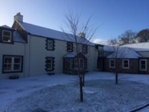 barwheys in the snow